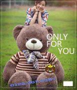Gấu bông khổng lồ Teddy Cool (1m8, 2m3)