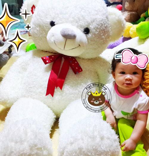 Gau Teddy Sweet Kiss trang (1m4, 1m8)
