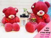 Gấu cầm bông hồng (1m2, 1m5)