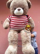 Gấu teddy nâu áo len cờ mỹ (1m5)