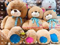 Gấu bông teddy Cute bear (90cm, 1m2, 1m4)
