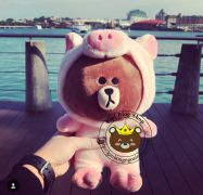 Gấu bông Brown cosplay heo hồng (25cm, 50cm)