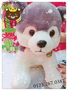 Chó bông Husky xám (50cm)