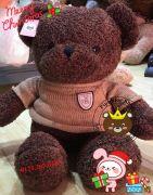 Gấu bông teddy baby socola (80cm, 1m2)