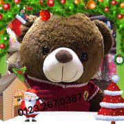 Gấu bông teddy lông siêu dày áo len Ferrari (1m2, 1m4)