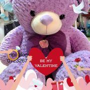 Gấu bông teddy nơ tím (1m4)