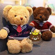 Gấu bông Teddy baby áo len caravat (40cm, 60cm, 80cm, 1m2)