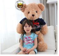 Gấu bông Teddy Vintage Hugsbaby chính hãng (60cm, 80cm, 1m, 1m2)
