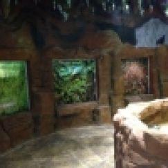 Việt Pet Garden Shop và Thủy Cung Vinpearl Aquarium Times City