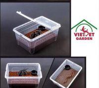 Plastic Box for Snake ( hộp nhựa cho bò sát sống đêm )