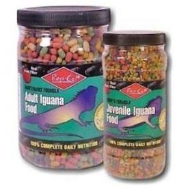 Đồ ăn khô cho Rồng Nam Mỹ - Repcal for Juvenile Iguana