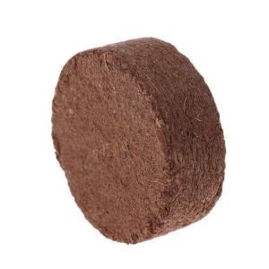 mùn dừa 1