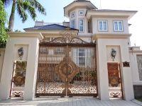 Các kiểu cổng lùa sắc hiện đại cho biệt thự