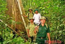 Khám phá Khu dự trữ sinh quyển miền Tây xứ Nghệ