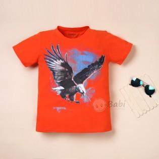 Áo thun in hình đại bàng cho bé trai từ 6 tuổi - 10 tuổi (Size đại)
