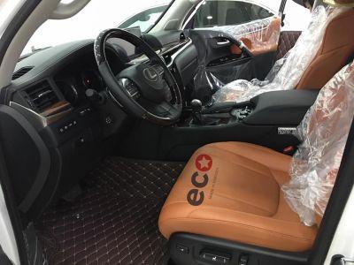 Thảm lót sàn Eco HD LX 570 màu nâu