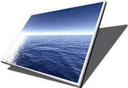 Màn hình Laptop Wide 15.4 LCD Gương
