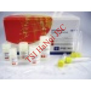 PerfectPure DNA Blood Kit