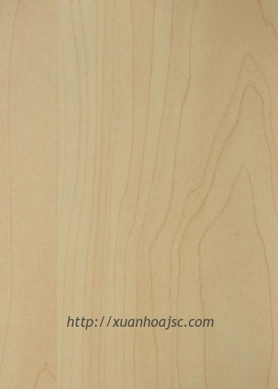 Mầu MFC MS 2165A - Yellow Maple