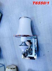 Đèn treo tường T6550/1