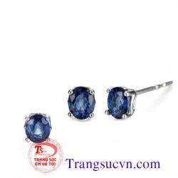 Sapphire thiên nhiên bộ vàng tây-TSVN