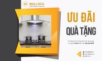 Khuyến Mãi Malloca Tháng 04/2019