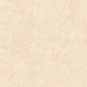 Gạch ốp lát Granite Viglacera Eco-S820
