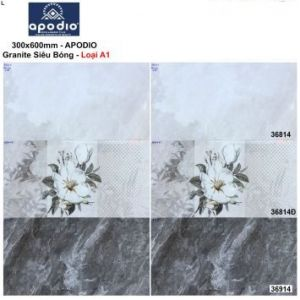 Gạch 30x60 Apodio 36814-36914