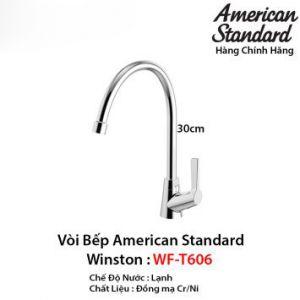 Vòi Rửa Bát 1 Đường Lạnh American Standard WF-T606