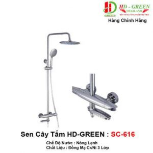 Sen Cây Tắm HDGreen SC616