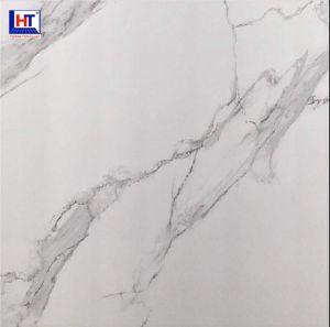 Gạch Ấn Độ 1200×1200 VA-1202