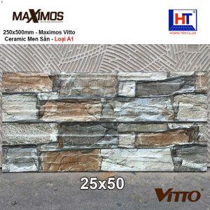 Gạch 25x50 VITTO Maximos 1401